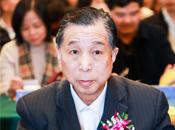 中国电子商务协会副理事长陈震先生致辞