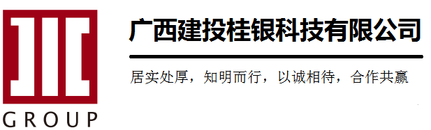 <strong>广西建投桂银科技有限</strong>