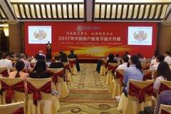 2017年度中国客户服务